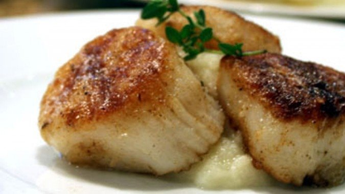 low-carb cauliflower puree and scallops